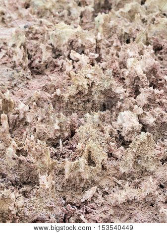 Close up photo of mineral formations on the sulphur lake Dallol in a volcanic explosion crater in the Danakil Depression northeast of the Erta Ale Range in Ethiopia.