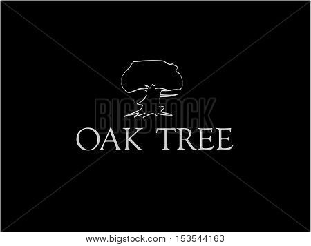 Oak tree outline icon with inscription on black background