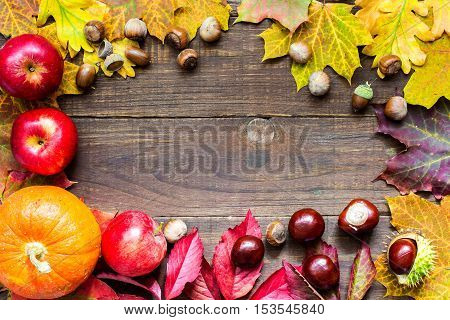 autumn background with colorful leaves chestnuts pumpkin apples and nuts . thanksgiving greeting card concept