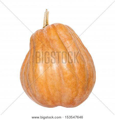Fresh yellow pumpkin isolated on white background