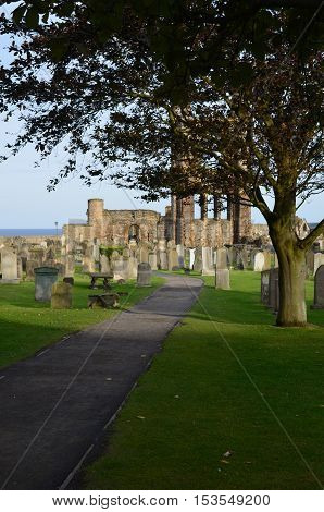 Cemetery and remains of St Andrew's priory and Cathedral.
