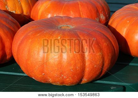 Halloween pumpkins. everything is ready for celebration. a nice and warm spirit