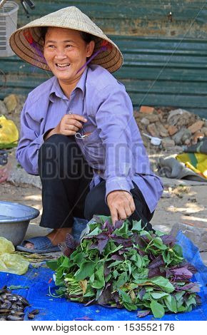 Vinh, Vietnam - May 29, 2015: woman is selling basil leaves outdoor in Vinh, Vietnam
