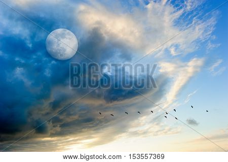 Birds moon clouds is a colorful surreal cloudscape with a flock of silhouetted birds flying by and a full moon rising in the sky.