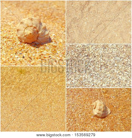 Collage of summer sea photos, seashells on sand, set of toned images.