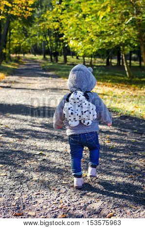 Cute little boy walking in the autumn park with plush furry dog backpack. Cheerful baby boy having fun outdoors. Kid in fall forest. Toddler kid hiking on a sunny October day.