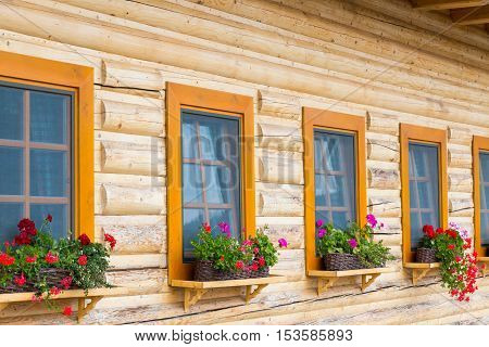 Row of window flowerpots with blooming flowers