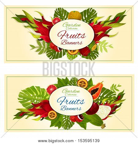 Garden fresh fruits banners. Vector design of tropical exotic fruits in bunch of jungle palm leaves and plants. Orange, lychee, mango, dragon fruit, papaya, avocado, grapefruit, feijoa