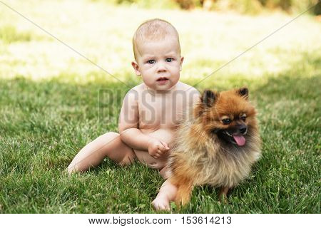 Kid And Puppy On The Green Grass Outdoors.