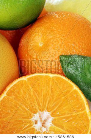Detail of citrus fruits