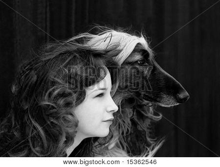 Portrait of girl with her friend - afghan hound