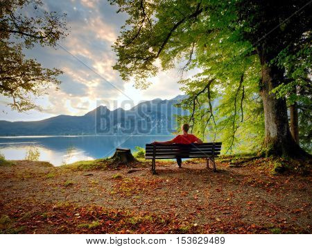 Man Sit On Wooden Bench At Mountain Lake. Bank Under Beeches Tree
