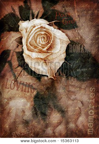 Grungy rose