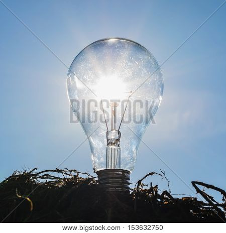 light bulb with sunshine power concept and blue sky background