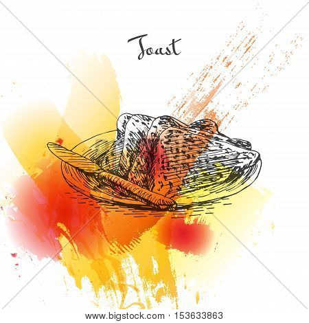 Toast colorful watercolor effect illustration. Vector illustration of breakfast.
