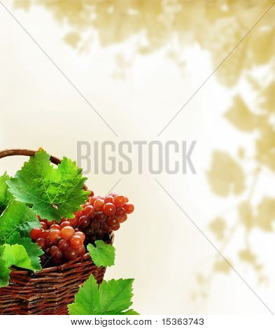 Grapes background with wicker basket full of ripe wine grapes and leaves
