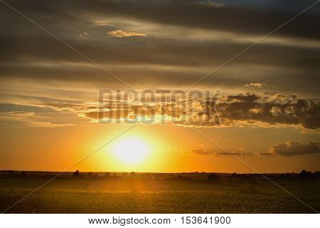 landscape with golden rays of the setting sun