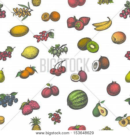 Vector illustration colored seamless pattern of a big set of juicy ripe fruit. Isolated white background. Hand-drawn sketch fruity. Vintage retro style. Wallpaper for restaurant cafe eateries kitchen.