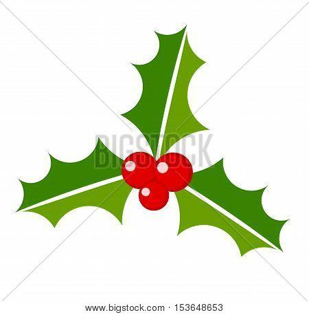 Christmas plant symbol icon holly berry illustration