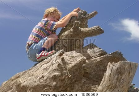 Boy Climbing On Dead Tree