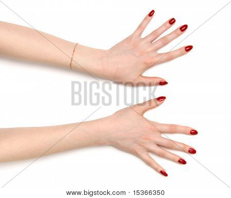 Two wide open woman hands. On white with shadows.