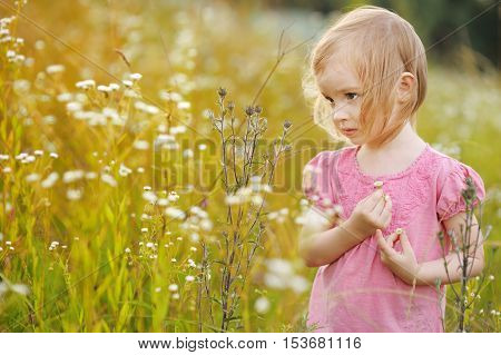 Adorable Little Girl In A Meadow