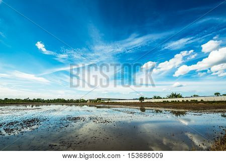 Agriculture land prepare for cultivate and blue sky background