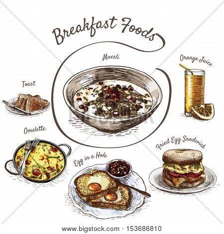 Colorful illustration of breakfast foods. Vector colorful illustration of breakfast