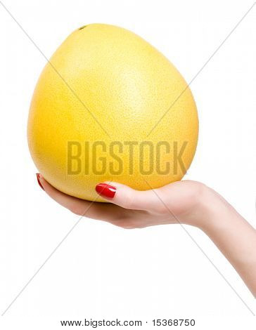 Woman hand with tropical citrus fruit. Isolated on white.