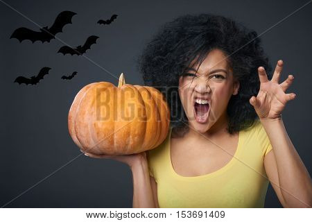 Halloween celebration. Young mixed race african american - caucasian woman holding pumpkin growling at you and gesturing a claw shape with her hands, over gray background with bats