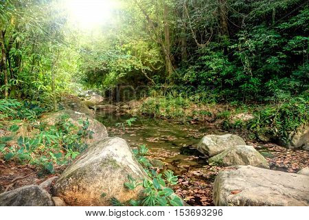 Mysterious river flowing through rocks and a large stone in jungle of Khao Sok National Park Surat Thani Province Thailand.