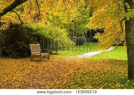 Bench in a city park in autumn.