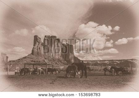 An image of the Monument valley Navajo tribal park with horses Utah-ArizonaUSA (stylized retro).