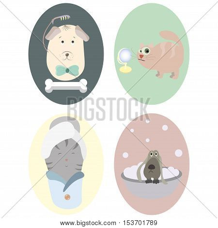 Pet grooming service illustration with two dogs of different breeds, a cat with a towel on it's head and original lettering, no transparencies