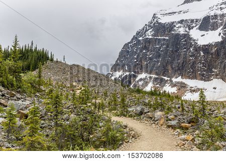 Hiking Trail In The Rocky Mountains - Jasper Np, Canada