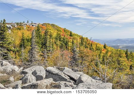 The upswell of the Allegheny Front is adorned with fall colors at Bear Rocks in West Virginia's Dolly Sods Wilderness.