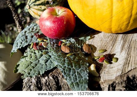 Apple with Kale pumpkins basket nuts and berries and gourd. Fall seasonal Thanksgiving healthy food background in nature