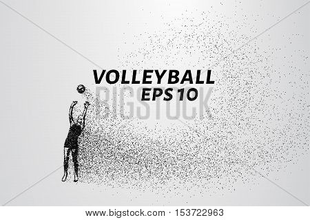 Volleyball player of the particles. Volleyball consists of circles and points. Vector illustration