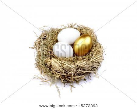 Golden egg in the nest isolated on white