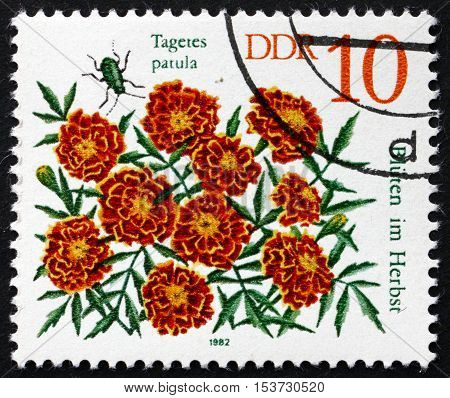 GERMANY - CIRCA 1982: a stamp printed in Germany shows Student Flowers Tagetes Patula Autumn Flower circa 1982