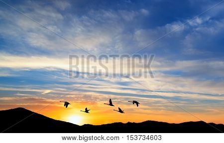 Several birds flying upon the mountain in cloudy sky