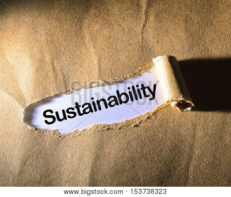Sustainability word on the brown torn paper
