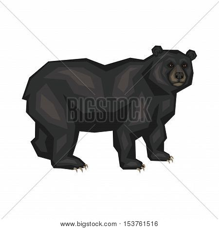 American black bear. Vector image of a predatory animal. Isolated on a white background.
