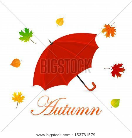 Autumn theme, red umbrella and colorful leaves on a white background, illustration.