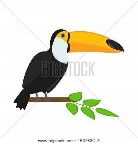 Toucan sitting on branch. Tropical bird. Toucan isolated on a white background. Vector illustration.