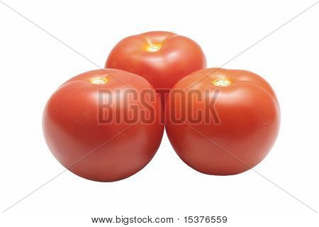 Three Tomatoes Isolated