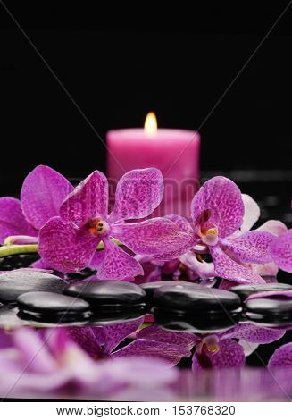 Set of pink orchid ,candle with therapy stones