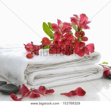 branch orchid on towel with stones