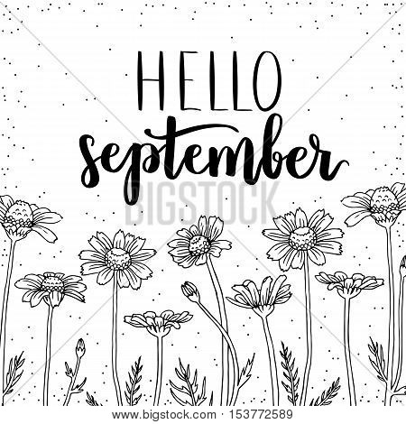 Vector Illustration Hello September With Daisy. Black Ink Coloring On White Isolated Background.