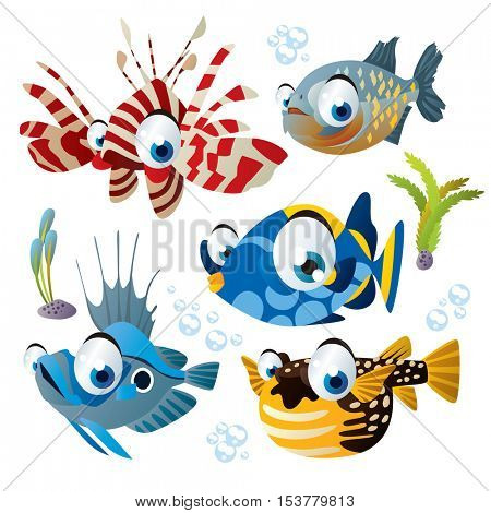 cute vector flat style illustration of sea life animals and fish. Funny collection set of tropical reef underwater creatures: zebra fish, puffer, john dory, piranha